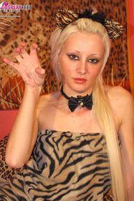 27.05.2012 · Ilenia · Tiger